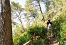Wanderreisen Mallorca